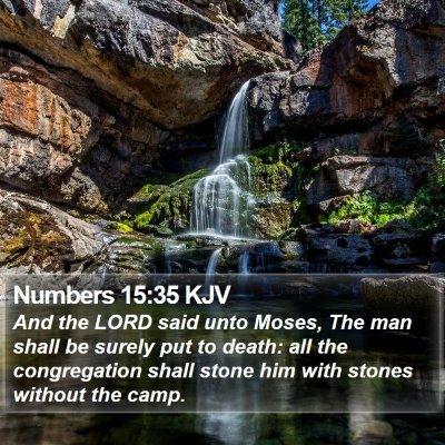 Numbers 15:35 KJV Bible Verse Image