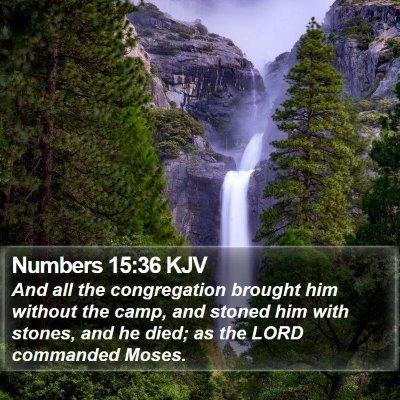 Numbers 15:36 KJV Bible Verse Image