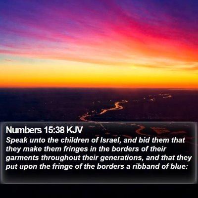Numbers 15:38 KJV Bible Verse Image