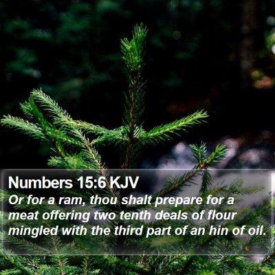 Numbers 15:6 KJV Bible Verse Image