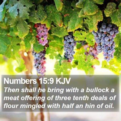Numbers 15:9 KJV Bible Verse Image
