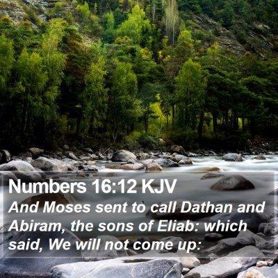 Numbers 16:12 KJV Bible Verse Image