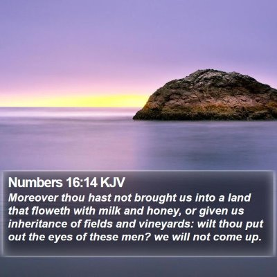 Numbers 16:14 KJV Bible Verse Image