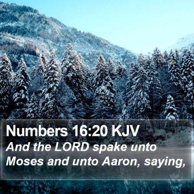 Numbers 16:20 KJV Bible Verse Image