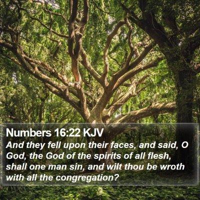 Numbers 16:22 KJV Bible Verse Image