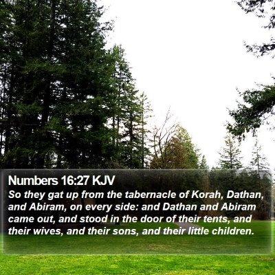 Numbers 16:27 KJV Bible Verse Image