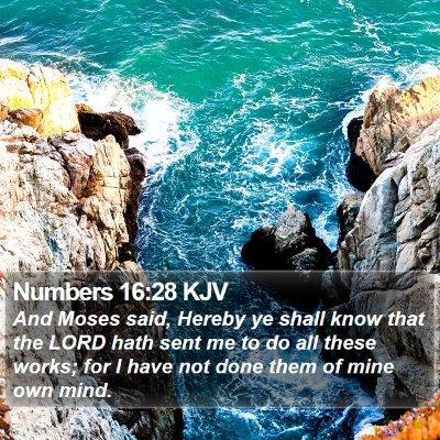 Numbers 16:28 KJV Bible Verse Image