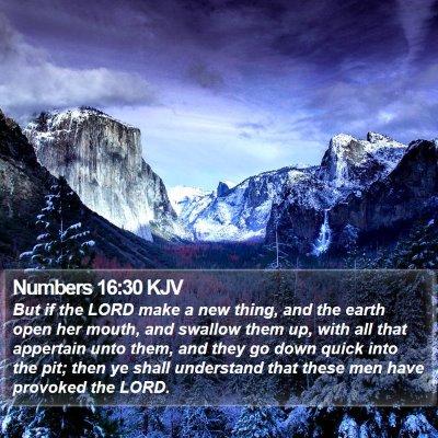 Numbers 16:30 KJV Bible Verse Image