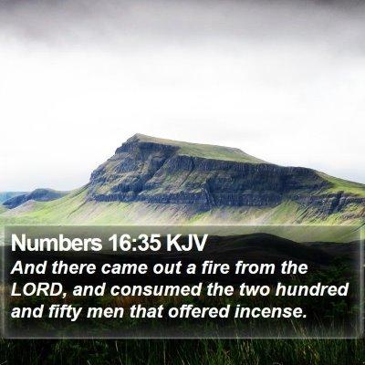 Numbers 16:35 KJV Bible Verse Image
