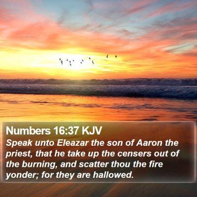 Numbers 16:37 KJV Bible Verse Image
