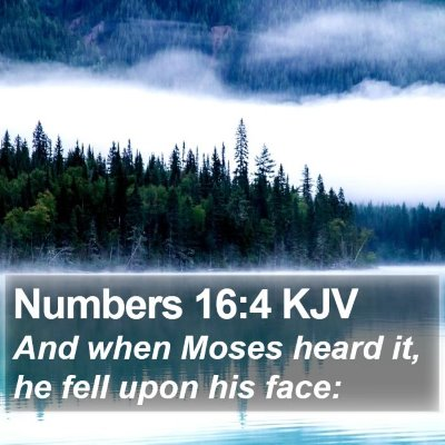Numbers 16:4 KJV Bible Verse Image