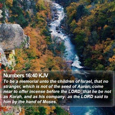 Numbers 16:40 KJV Bible Verse Image