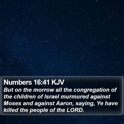 Numbers 16:41 KJV Bible Verse Image