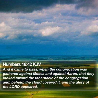 Numbers 16:42 KJV Bible Verse Image