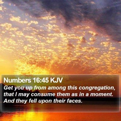 Numbers 16:45 KJV Bible Verse Image