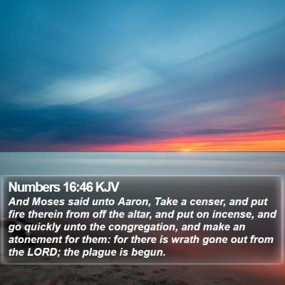 Numbers 16:46 KJV Bible Verse Image