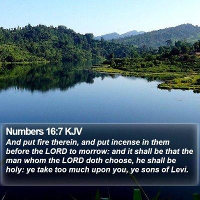 Numbers 16:7 KJV Bible Verse Image