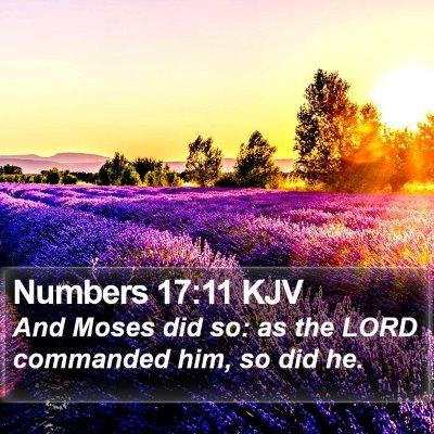 Numbers 17:11 KJV Bible Verse Image