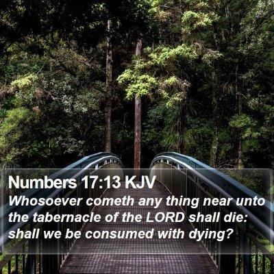 Numbers 17:13 KJV Bible Verse Image