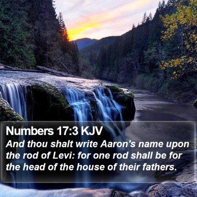Numbers 17:3 KJV Bible Verse Image