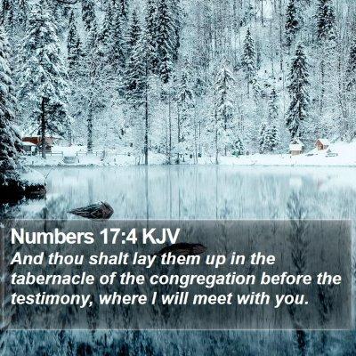 Numbers 17:4 KJV Bible Verse Image