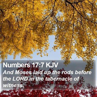 Numbers 17:7 KJV Bible Verse Image