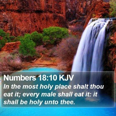 Numbers 18:10 KJV Bible Verse Image