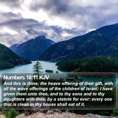 Numbers 18:11 KJV Bible Verse Image