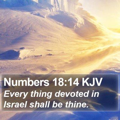 Numbers 18:14 KJV Bible Verse Image