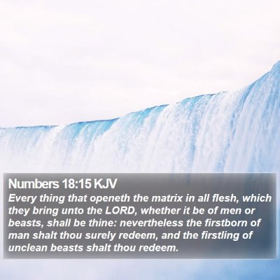 Numbers 18:15 KJV Bible Verse Image