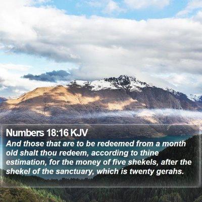 Numbers 18:16 KJV Bible Verse Image
