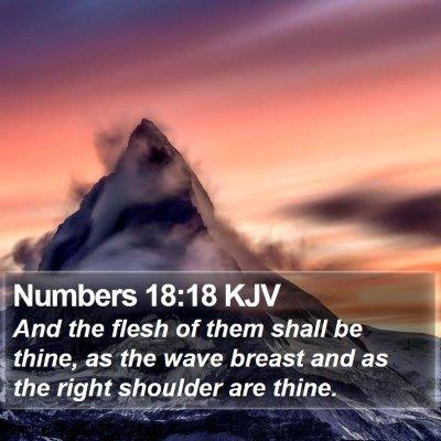 Numbers 18:18 KJV Bible Verse Image
