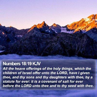 Numbers 18:19 KJV Bible Verse Image