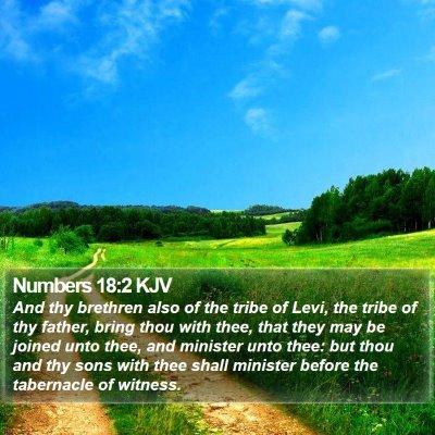 Numbers 18:2 KJV Bible Verse Image