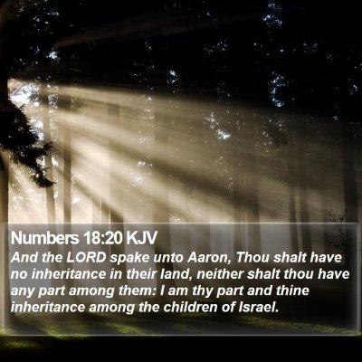 Numbers 18:20 KJV Bible Verse Image