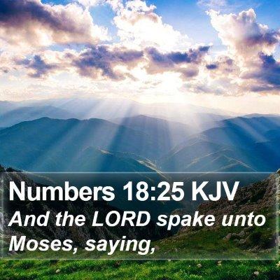 Numbers 18:25 KJV Bible Verse Image