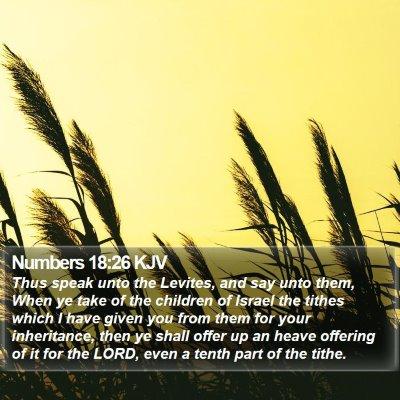 Numbers 18:26 KJV Bible Verse Image