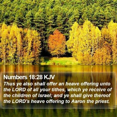 Numbers 18:28 KJV Bible Verse Image