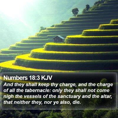 Numbers 18:3 KJV Bible Verse Image