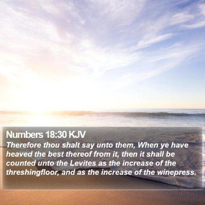 Numbers 18:30 KJV Bible Verse Image