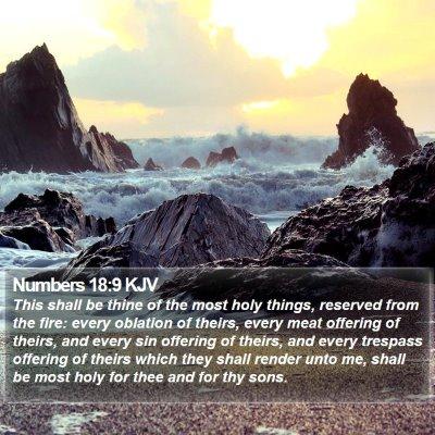 Numbers 18:9 KJV Bible Verse Image