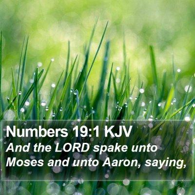 Numbers 19:1 KJV Bible Verse Image
