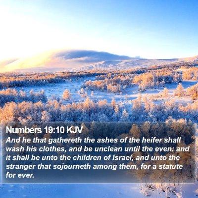 Numbers 19:10 KJV Bible Verse Image