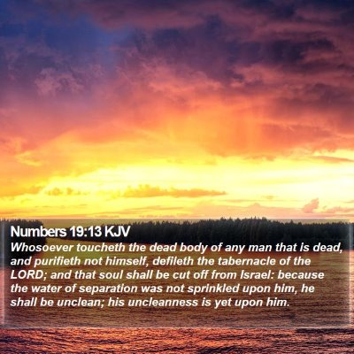 Numbers 19:13 KJV Bible Verse Image