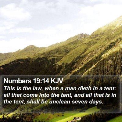 Numbers 19:14 KJV Bible Verse Image