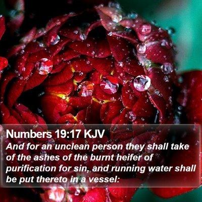 Numbers 19:17 KJV Bible Verse Image