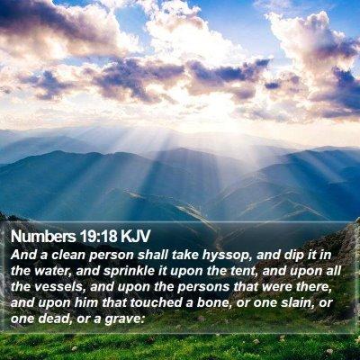 Numbers 19:18 KJV Bible Verse Image