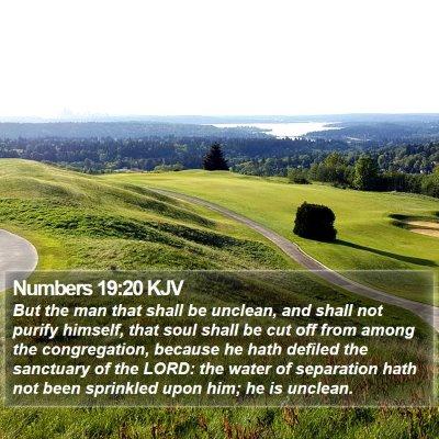 Numbers 19:20 KJV Bible Verse Image