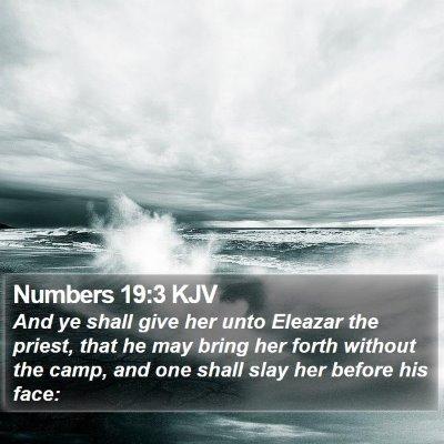 Numbers 19:3 KJV Bible Verse Image