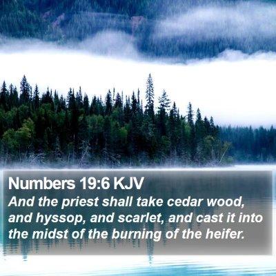 Numbers 19:6 KJV Bible Verse Image